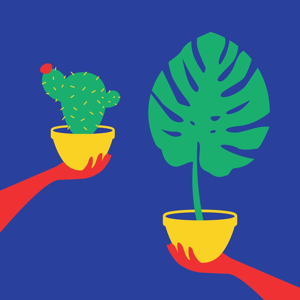 Plants_in_hands